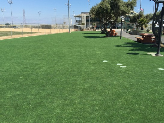 Grass Carpet Nucla, Colorado Garden Ideas, Parks artificial grass