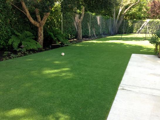 Artificial Grass Photos: Grass Carpet Snowmass Village, Colorado Lawn And Landscape