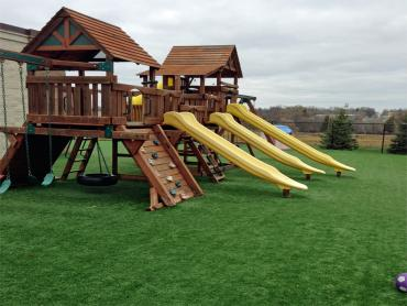 Artificial Grass Photos: Grass Installation Applewood, Colorado Landscaping Business, Commercial Landscape