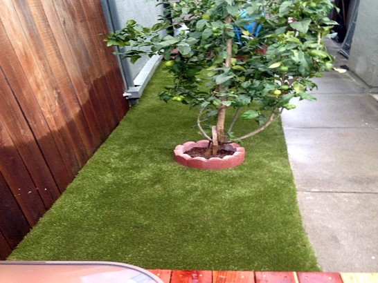 Artificial Grass Photos: Grass Installation Penrose, Colorado Pet Turf, Backyard Garden Ideas