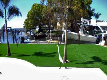 Artificial Grass Photos: Grass Turf East Pleasant View, Colorado Landscape Ideas, Backyard Landscaping