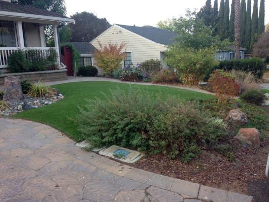 Artificial Grass Photos: Grass Turf Sanford, Colorado Landscaping Business, Front Yard