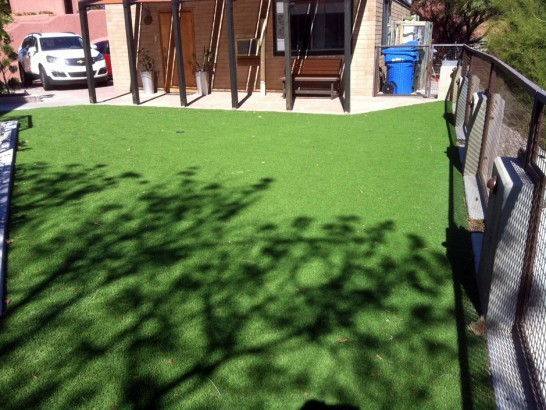 Artificial Grass Photos: Grass Turf Woody Creek, Colorado Backyard Playground, Backyard Designs