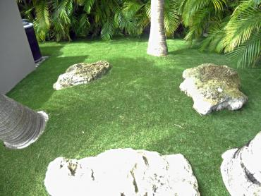 Artificial Grass Photos: Green Lawn Carriage Club, Colorado Landscaping Business, Backyards