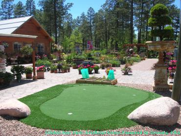 Green Lawn Glendale, Colorado Putting Green, Backyard Makeover artificial grass