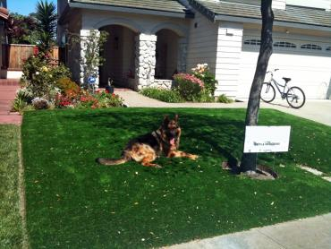 Artificial Grass Photos: Green Lawn Grand View Estates, Colorado Landscape Design, Small Front Yard Landscaping