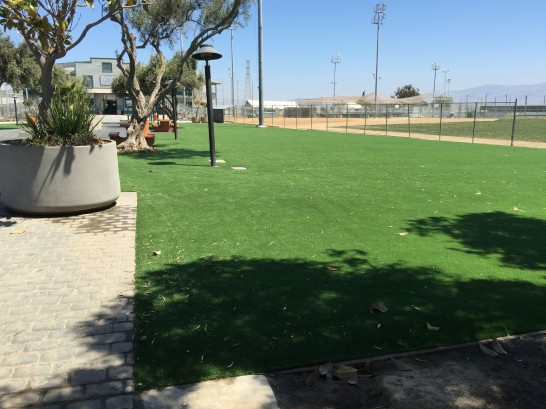 Artificial Grass Photos: Green Lawn Norwood, Colorado Rooftop, Parks