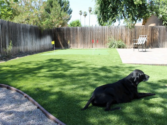 Artificial Grass Photos: How To Install Artificial Grass Colorado City, Colorado Artificial Putting Greens, Backyard Landscaping Ideas
