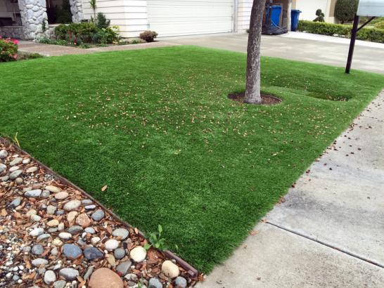 Artificial Grass Photos: Installing Artificial Grass Byers, Colorado Landscaping, Landscaping Ideas For Front Yard