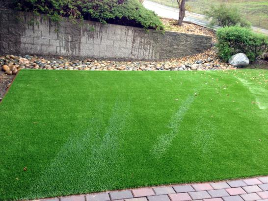 Artificial Grass Photos: Installing Artificial Grass North La Junta, Colorado Landscaping, Beautiful Backyards