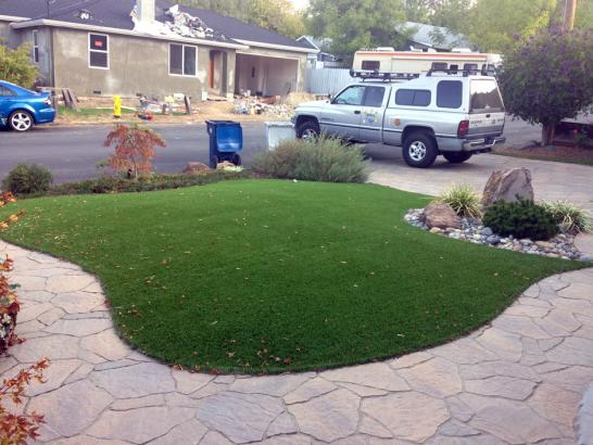 Artificial Grass Photos: Lawn Services Aguilar, Colorado Landscape Ideas, Front Yard Landscape Ideas