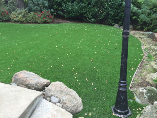 Artificial Grass Photos: Lawn Services Peetz, Colorado Design Ideas, Backyard Landscaping