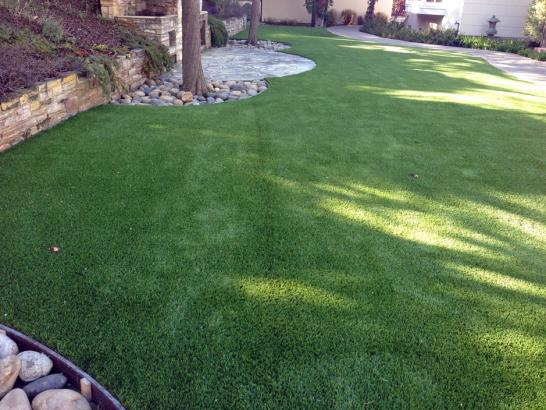 Artificial Grass Photos: Outdoor Carpet Blanca, Colorado Dog Running, Backyards