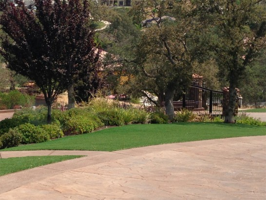 Artificial Grass Photos: Outdoor Carpet Catherine, Colorado Landscape Rock, Backyard Landscaping Ideas