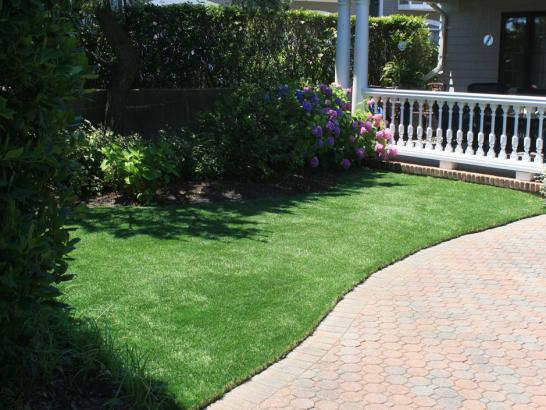 Artificial Grass Photos: Outdoor Carpet Fowler, Colorado Pictures Of Dogs, Landscaping Ideas For Front Yard