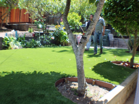 Artificial Grass Photos: Outdoor Carpet Manzanola, Colorado Landscape Design, Backyard Landscape Ideas