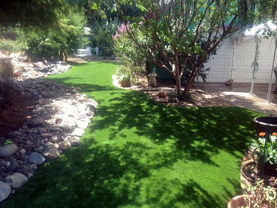 Artificial Grass Photos: Outdoor Carpet Olathe, Colorado Lawns, Backyard Garden Ideas