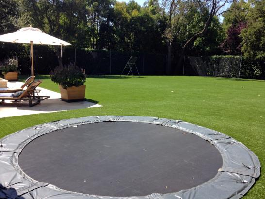 Artificial Grass Photos: Outdoor Carpet Wiley, Colorado Landscaping Business, Backyard Landscape Ideas