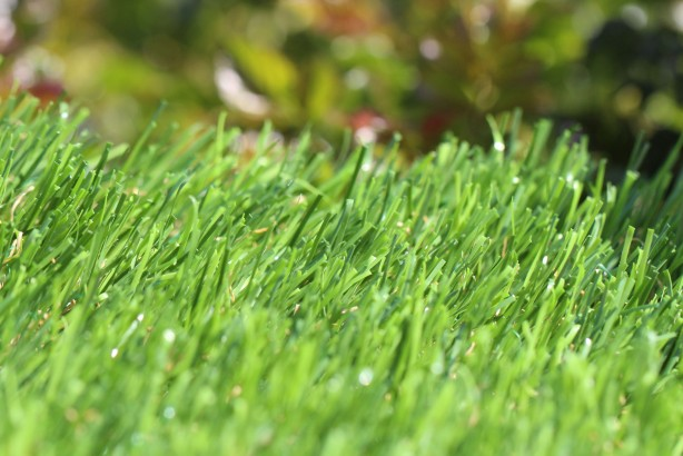 Buy Artificial Turf