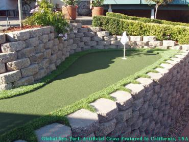 Plastic Grass Berkley, Colorado Backyard Putting Green, Backyard artificial grass