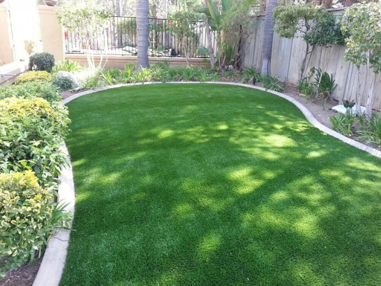 Artificial Grass Photos: Plastic Grass Collbran, Colorado Landscape Design