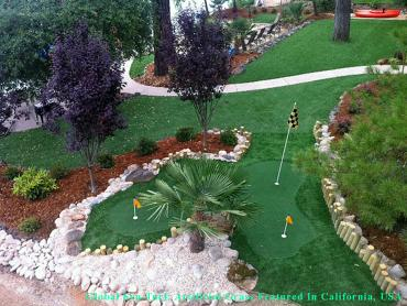 Plastic Grass Denver, Colorado Golf Green, Backyard Landscaping Ideas artificial grass