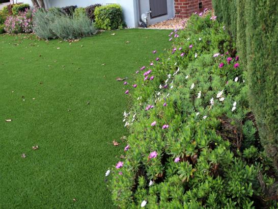Artificial Grass Photos: Plastic Grass Elbert, Colorado Design Ideas, Small Front Yard Landscaping
