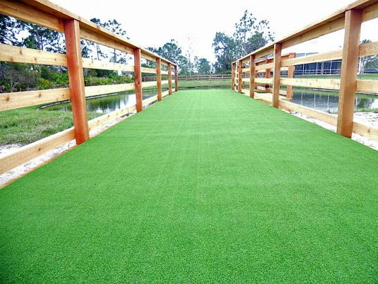 Artificial Grass Photos: Plastic Grass Otis, Colorado Landscape Design, Commercial Landscape