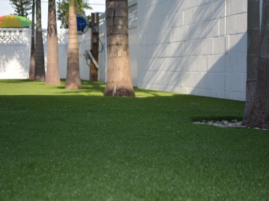 Artificial Grass Photos: Plastic Grass Parachute, Colorado Roof Top, Commercial Landscape