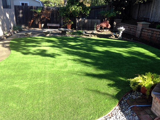 Artificial Grass Photos: Plastic Grass Salt Creek, Colorado Landscape Ideas, Backyard Garden Ideas