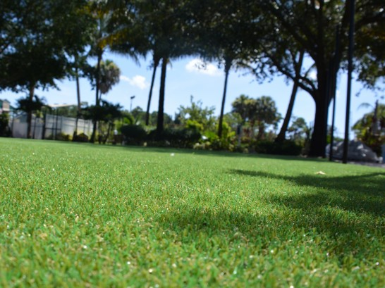 Artificial Grass Photos: Synthetic Grass Cost Alamosa East, Colorado Gardeners, Parks