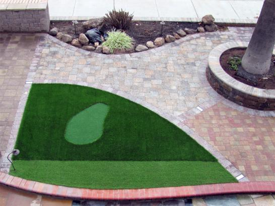 Artificial Grass Photos: Synthetic Grass Cost Dinosaur, Colorado Golf Green, Front Yard Landscaping