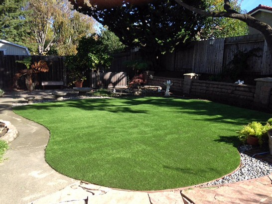 Artificial Grass Photos: Synthetic Grass Cost Gypsum, Colorado Backyard Playground, Small Backyard Ideas