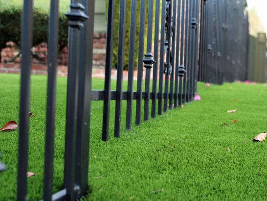Artificial Grass Photos: Synthetic Grass Cost Simla, Colorado Home And Garden, Front Yard Landscaping