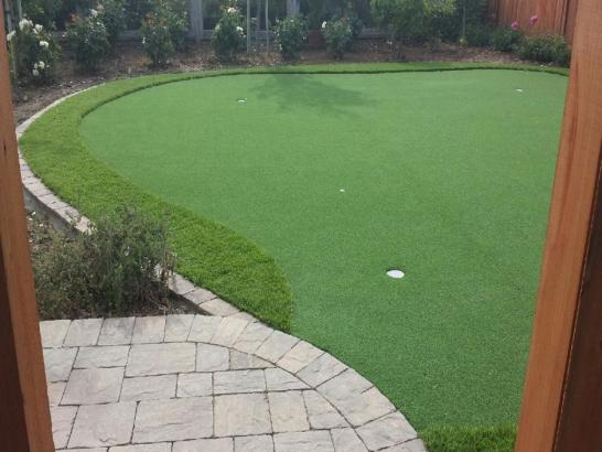 Artificial Grass Photos: Synthetic Lawn De Beque, Colorado Lawn And Landscape, Backyard Design