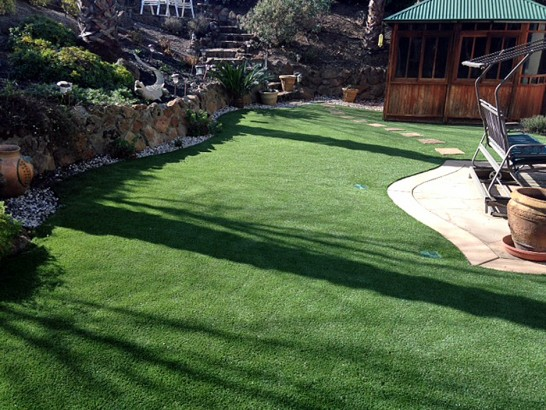 Artificial Grass Photos: Synthetic Lawn Hillrose, Colorado Backyard Deck Ideas, Backyard Design
