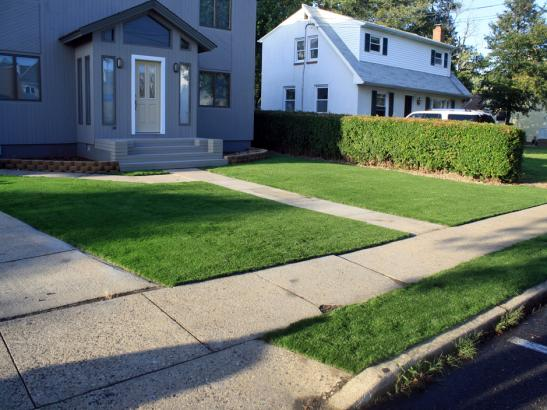 Artificial Grass Photos: Synthetic Lawn Holly, Colorado Landscaping, Front Yard Landscape Ideas