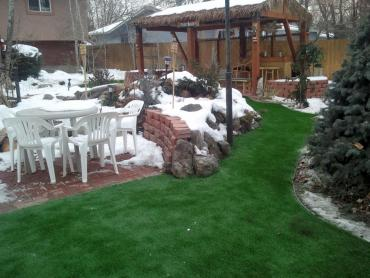 Artificial Grass Photos: Synthetic Lawn Ken Caryl, Colorado City Landscape, Backyard Garden Ideas