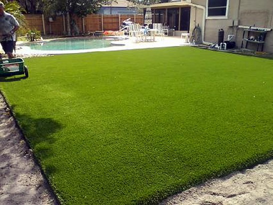 Artificial Grass Photos: Synthetic Lawn Otis, Colorado Landscape Ideas, Backyard Landscape Ideas