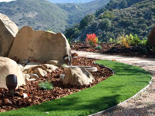 Artificial Grass Photos: Synthetic Lawn Pierce, Colorado Backyard Playground, Small Front Yard Landscaping