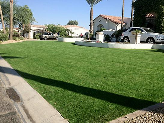 Artificial Grass Photos: Synthetic Lawn Saint Marys, Colorado Home And Garden, Front Yard Design