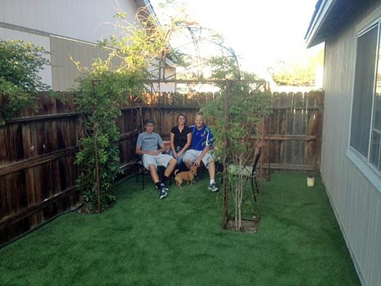 Artificial Grass Photos: Synthetic Lawn Walsh, Colorado City Landscape, Backyard Garden Ideas