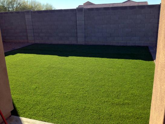 Artificial Grass Photos: Synthetic Turf Allenspark, Colorado Lawn And Landscape, Backyard Ideas