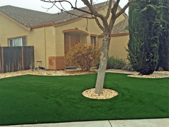 Artificial Grass Photos: Synthetic Turf Fleming, Colorado Rooftop, Front Yard Landscape Ideas