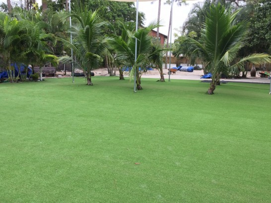 Artificial Grass Photos: Synthetic Turf Orchard Mesa, Colorado Lawns, Commercial Landscape