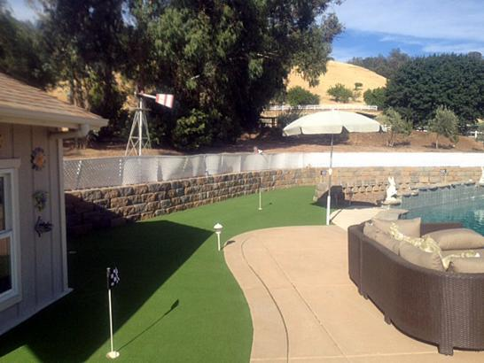 Artificial Grass Photos: Synthetic Turf Supplier Edgewater, Colorado Landscape Design, Backyard Ideas