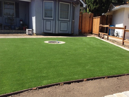 Artificial Grass Photos: Turf Grass Fowler, Colorado Landscape Rock, Backyards