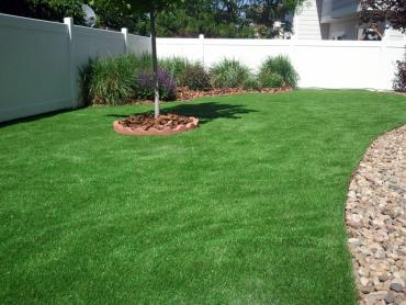 Turf Grass Lone Tree, Colorado Roof Top, Backyard artificial grass