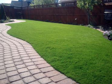 Turf Grass Mountain Meadows, Colorado Drainage, Backyard Design artificial grass