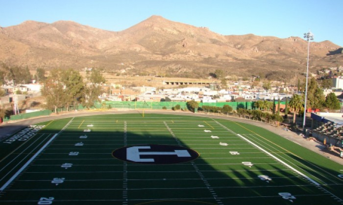 Sports Fields Synthetic Grass in Denver and Denver area